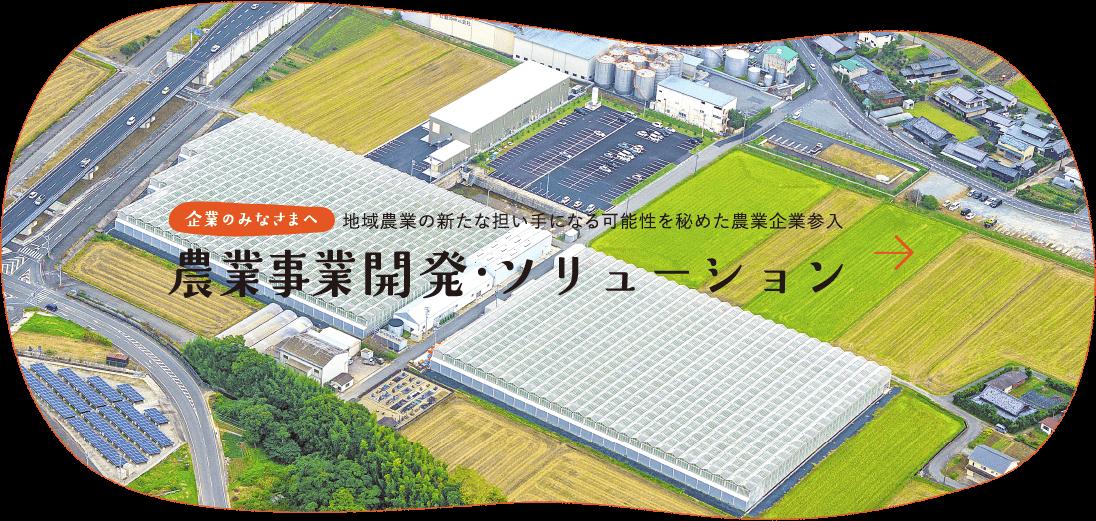 企業のみなさまへ地域農業の新たな担い手になる可能性を秘めた農業企業参入農業事業開発・ソリューション