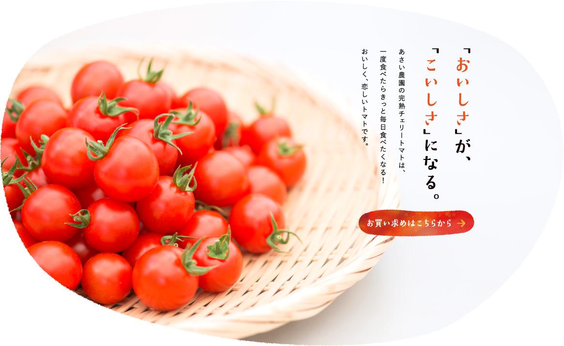 「おいしさ」が、「こいしさ」になる。あさい農園の完熟チェリートマトは、一度食べたらきっと毎日食べたくなる!おいしく、恋しいトマトです。お買い求めはこちらから